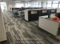 305方块地毯